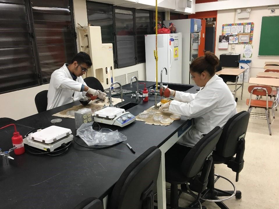 Laboratorios-Ciencia-Upward