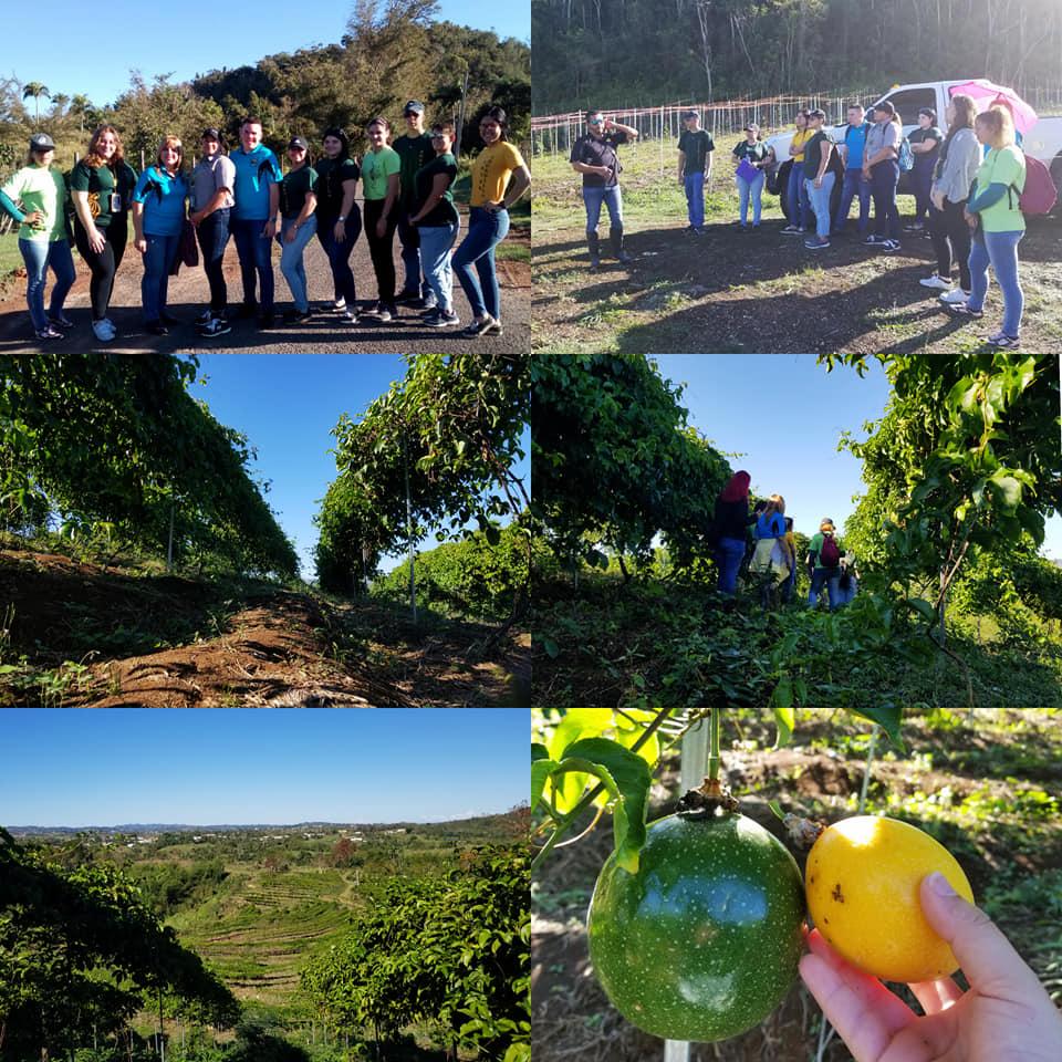 La Dra. Martiza Pagán y once estudiantes de la Asociación en Desarrollo Empresarial y Gerencial visitaron la Finca Pura Parcha en San Sebastián, P.R.